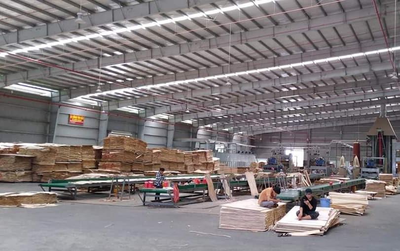 Nhà xưởng ván lạng sử dụng Ghim nhựa U